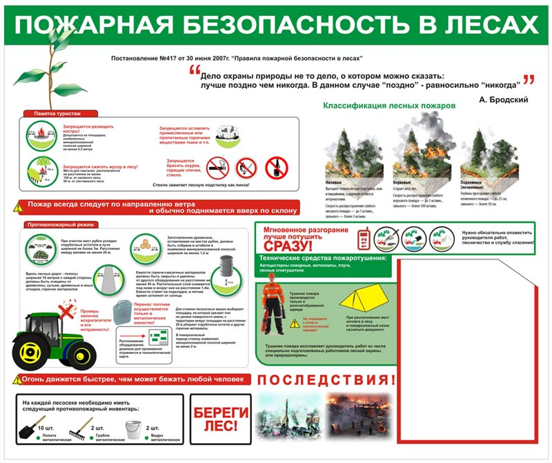 Стенд Пожарная безопасность в лесах №1, 800х900 мм