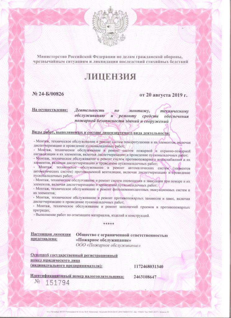 Лицензия МЧС 1 сторона